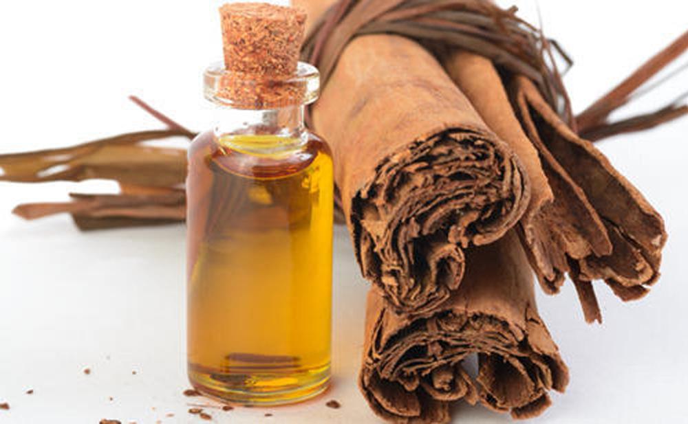 Cách phân biệt tinh dầu quế nguyên chất và tinh dầu quế pha loãng